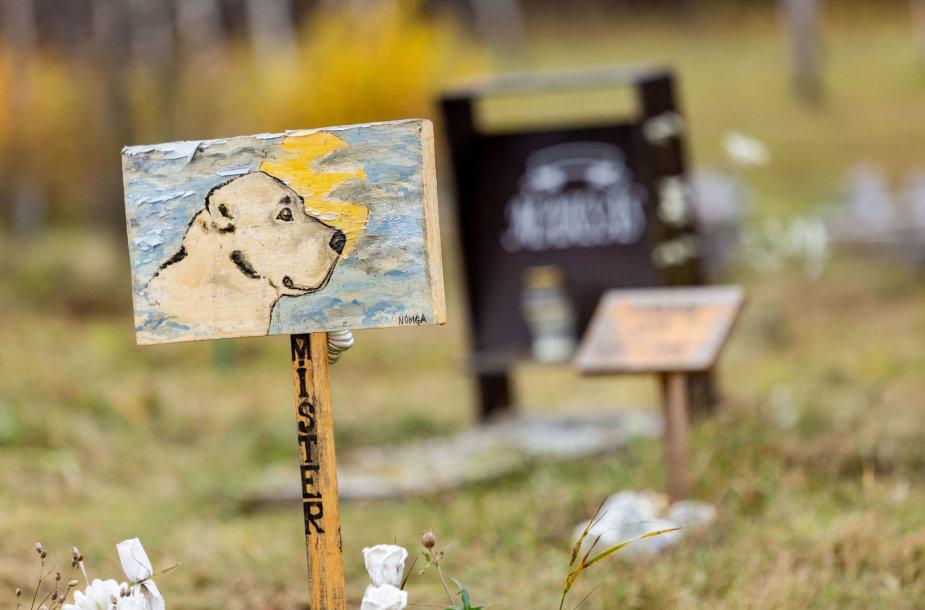 Gyvūnų kapinėse lankosi gyvūnų šeimininkai