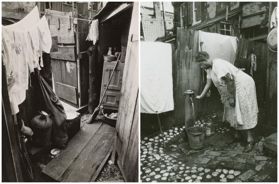 Lūšnynai ir vandens atsargos lauke, Vašingtone (1935 metai)