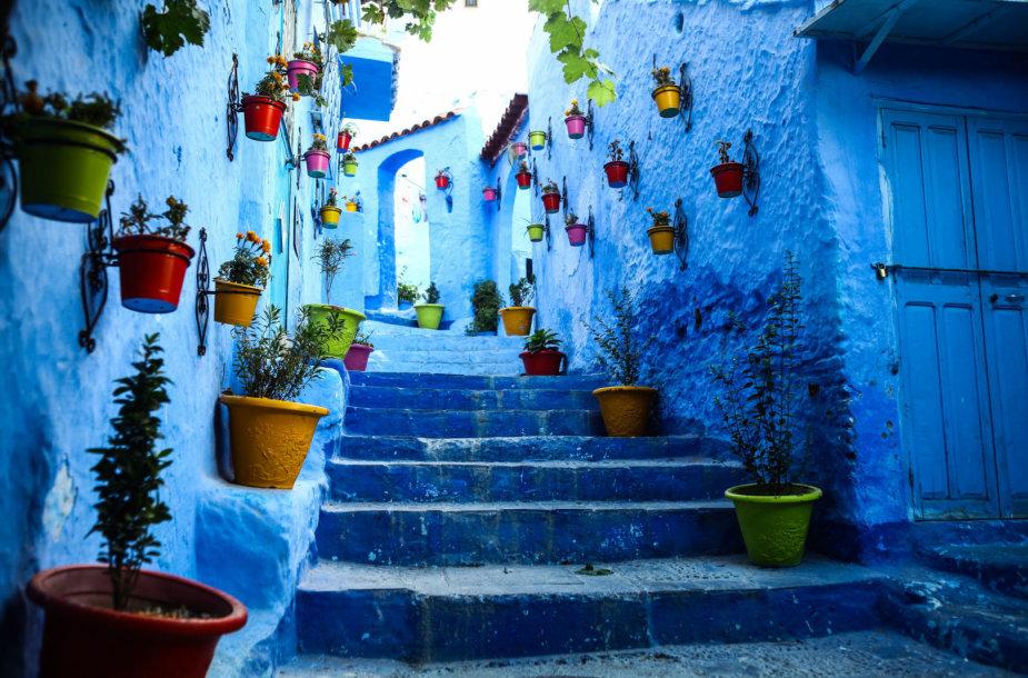 Šefšauenas Maroke