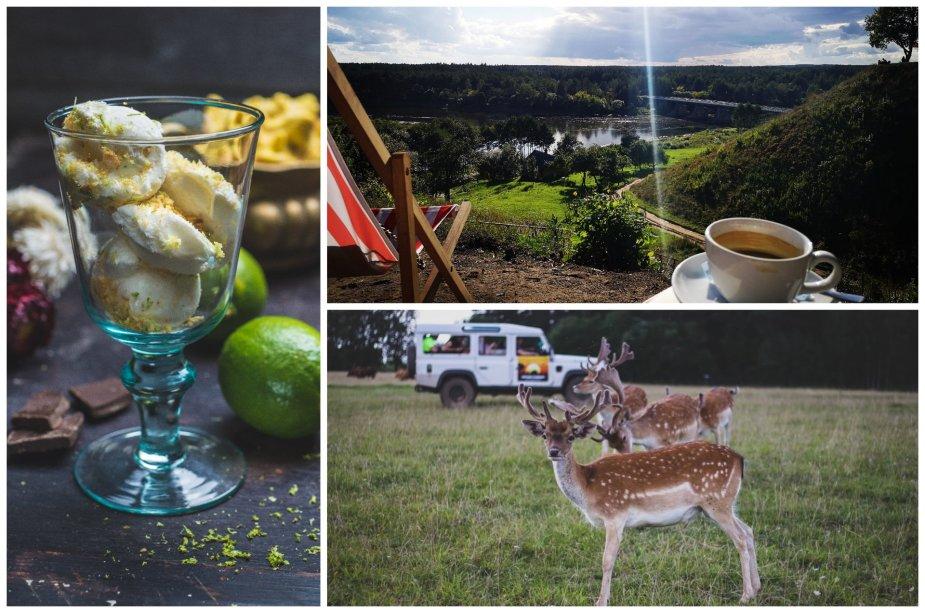 Kelionių idėjos penkiuose šalies regionuose: ką aplankyti verta dar šiemet