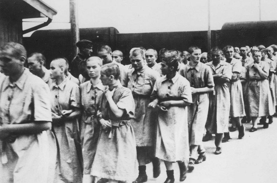 Aušvico koncentracijos stovyklos kalinės