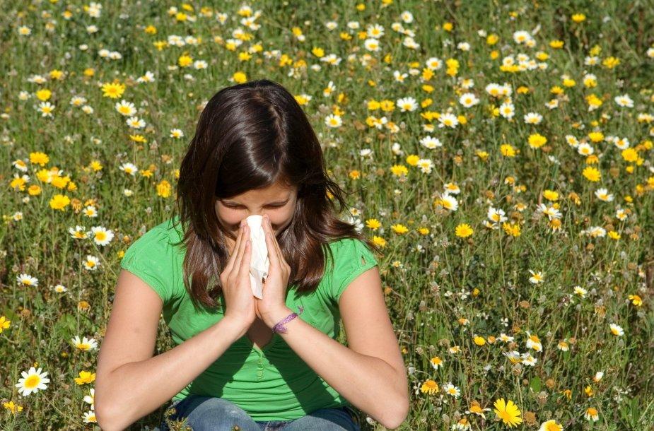 Alergiškus šienligei žmones vargina čiaudulys ir varvanti nosis.
