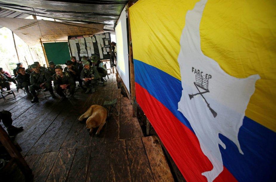 Paskutinės Kolumbijos ginkluotų revoliucinių pajėgų dienos prieš paskelbtą taiką