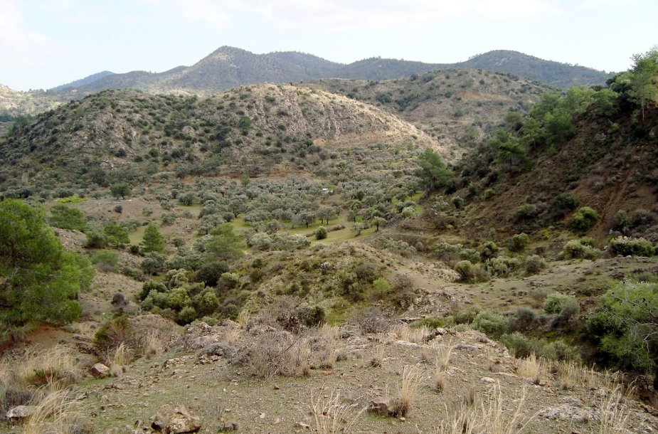 Troodo kalnai Kipre