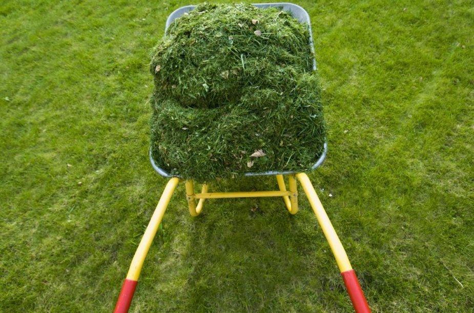 Sezoninis žaliųjų atliekų tvarkymas