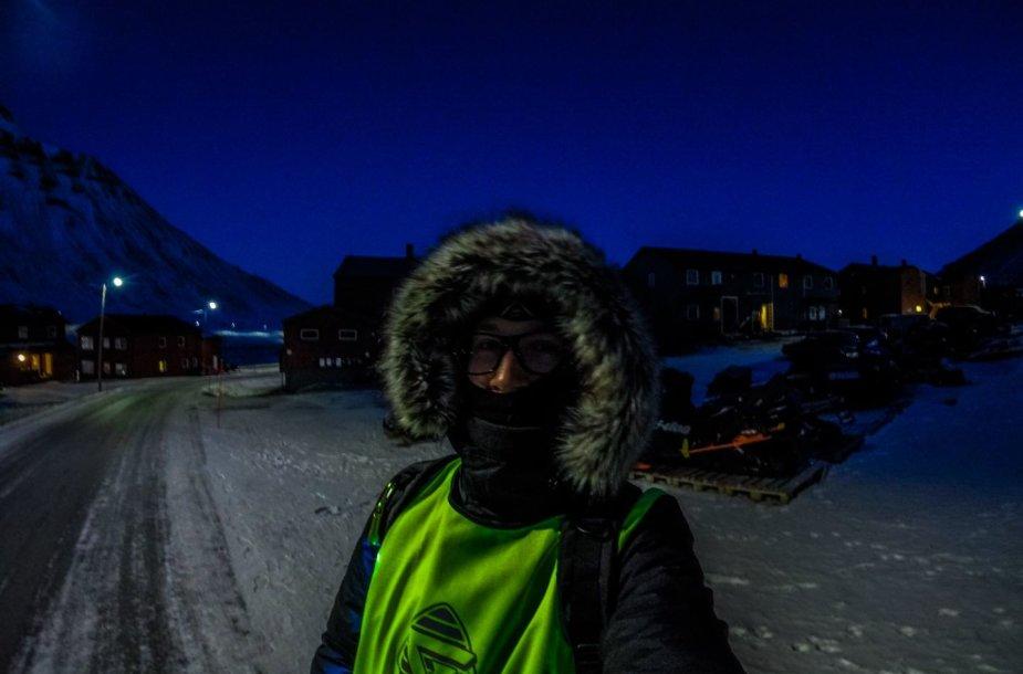Kelionė prie Šiaurės ašigalio