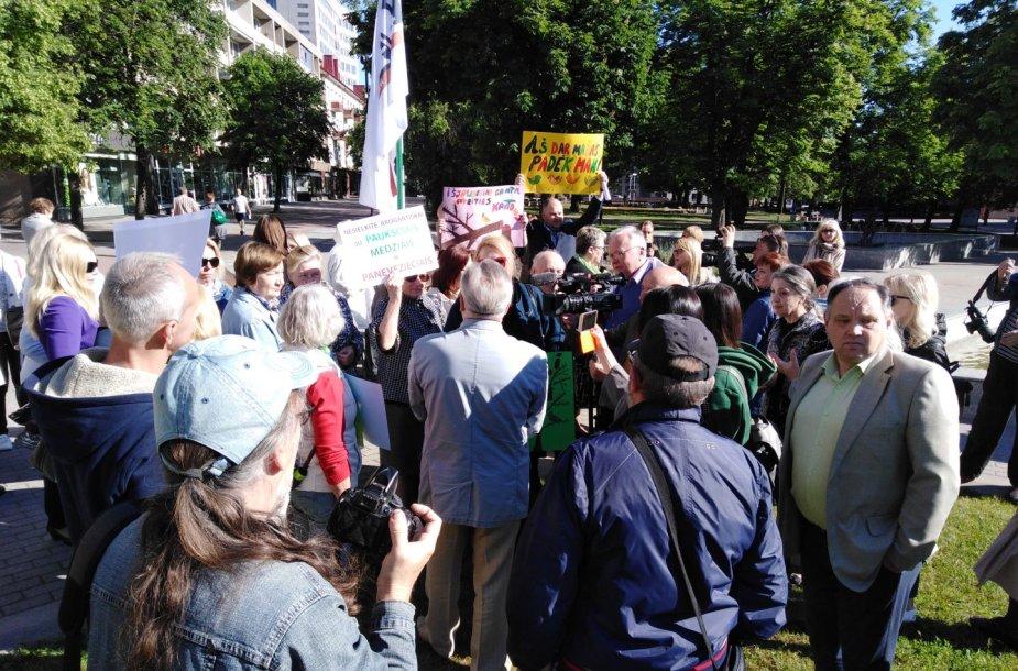 Protestas dėl išpjautų medžių