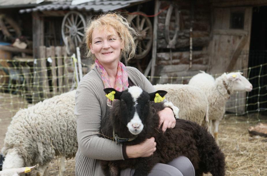 Avių ūkis