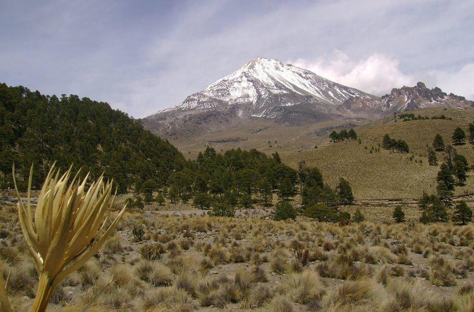 Orisabos ugnikalnis