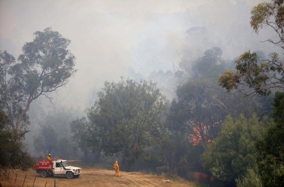 Australijoje suvaldytas milžiniškas gaisras