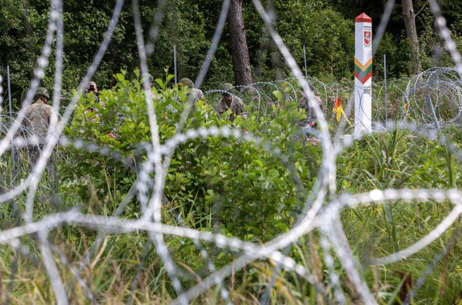 Spygliuotos vielos užtvara ties siena su Baltarusija