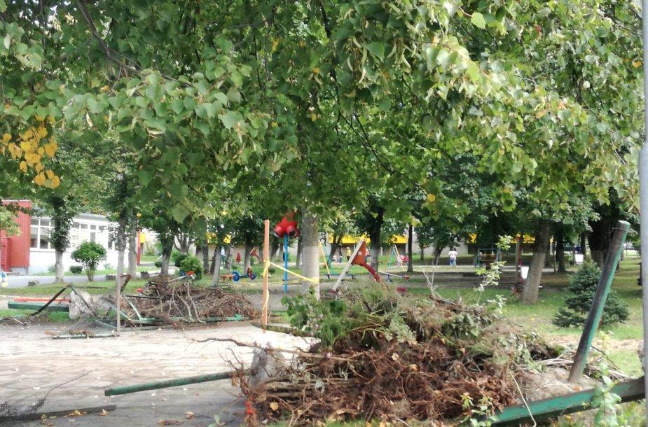 Šiuo metu kai kuriuose darželiuose tvoros išgriautos, mat bus juosiamos naujos.