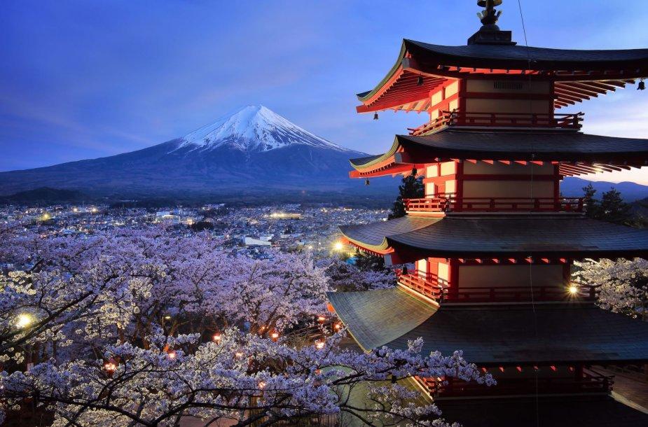 Fudži kalno grožis visais metų laikais