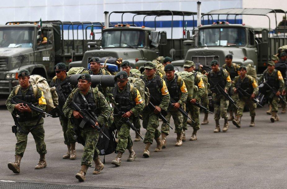 Meksikos kariai