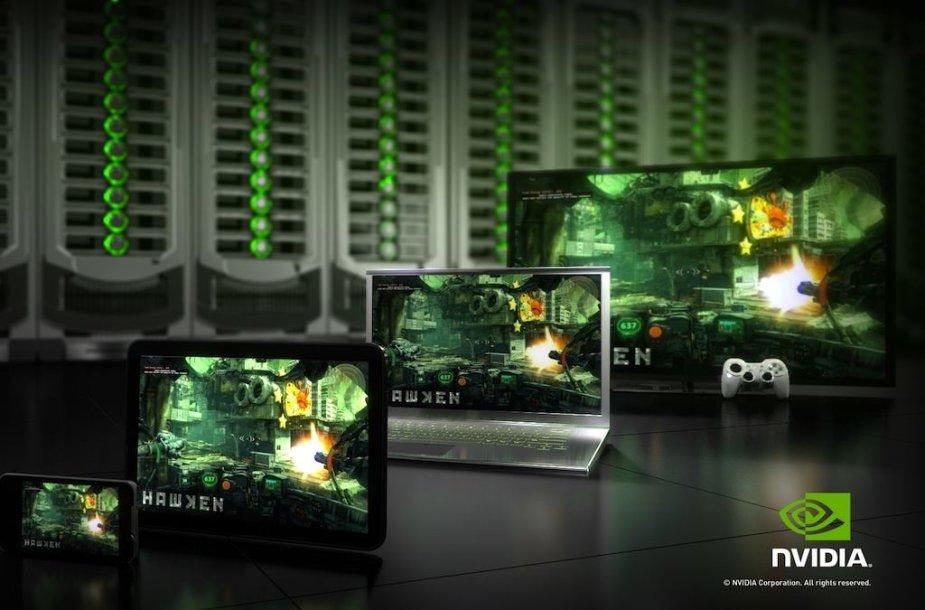 """""""nVdia"""" debesinė žaidimo platforma"""