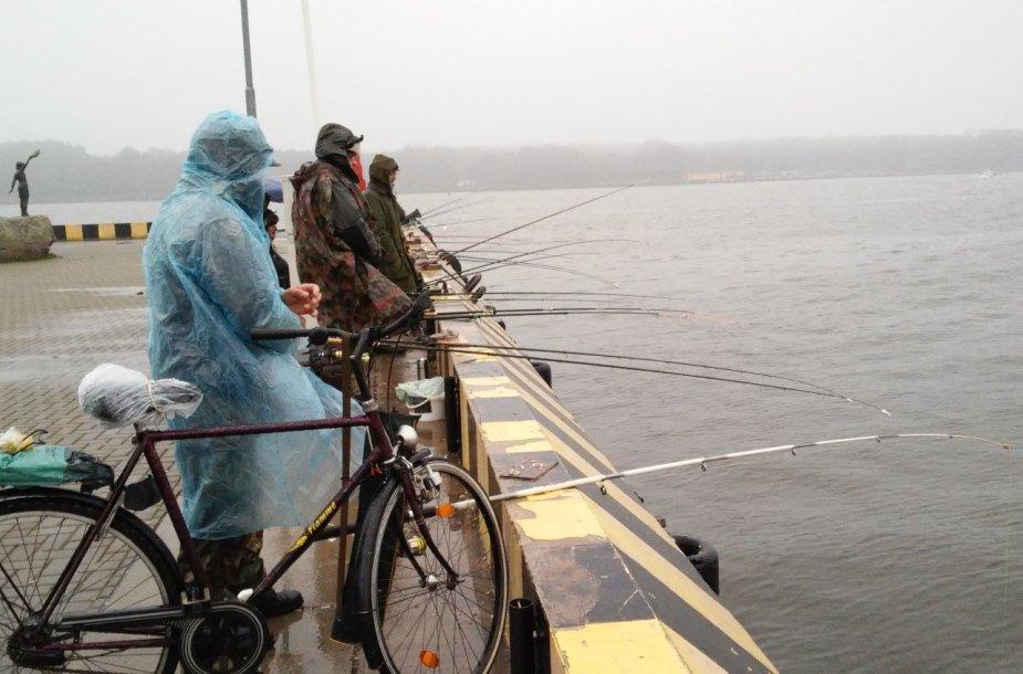 Žvejai šturmuoja Kuršmarių pakrantes – prasideda stintmetis