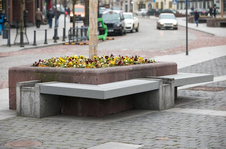 Nauji suoliukai Vilniaus Rotušės aikštėje
