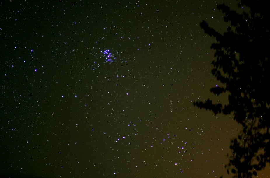 Nr.12. Plika akis Plejadu zvaigzdziu pulkelyje isskiria septynis ryskesnius sviesulius_Astrophoto.com