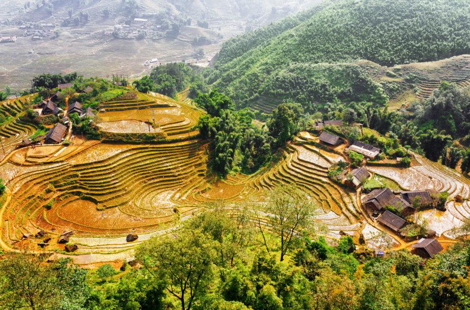 Sapa regionas Vietname