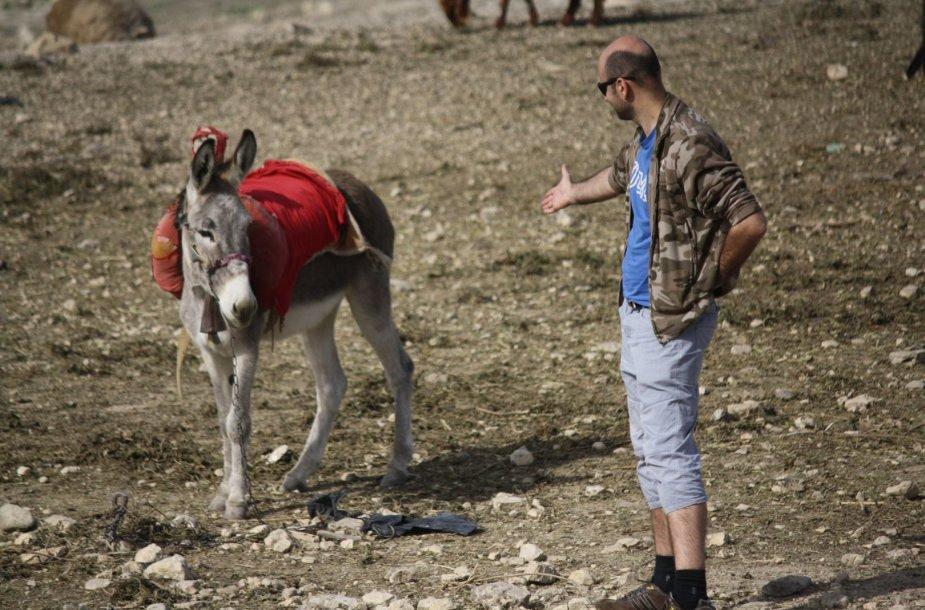 Nepasakyčiau, kad Jordanijoje asilai draugiški. Jie į atvykėlį žvelgia iš aukšto
