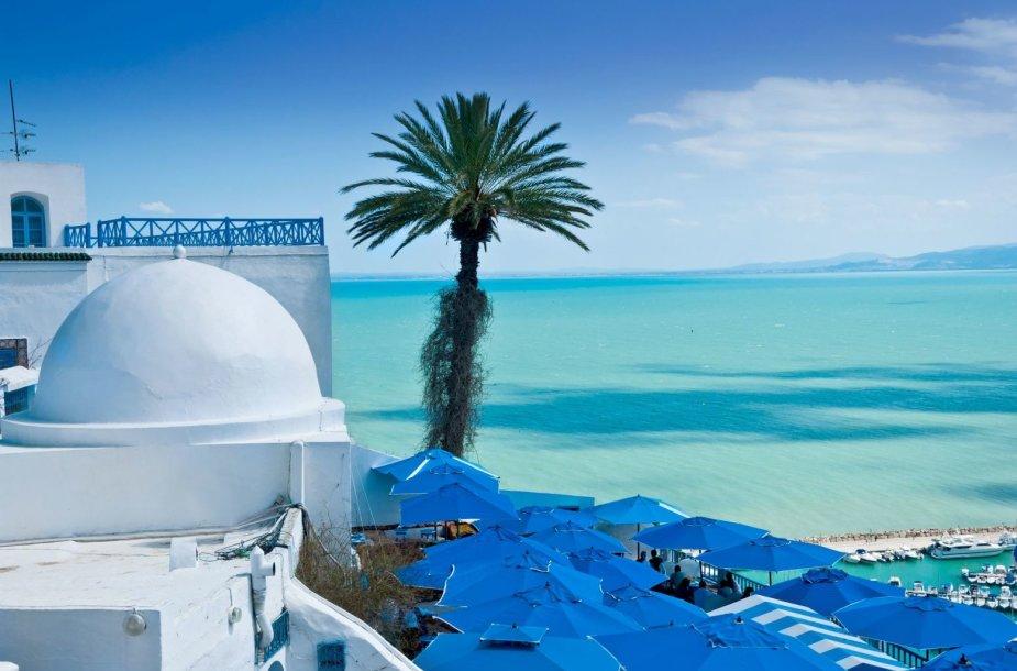 Sidi Bou Saidas