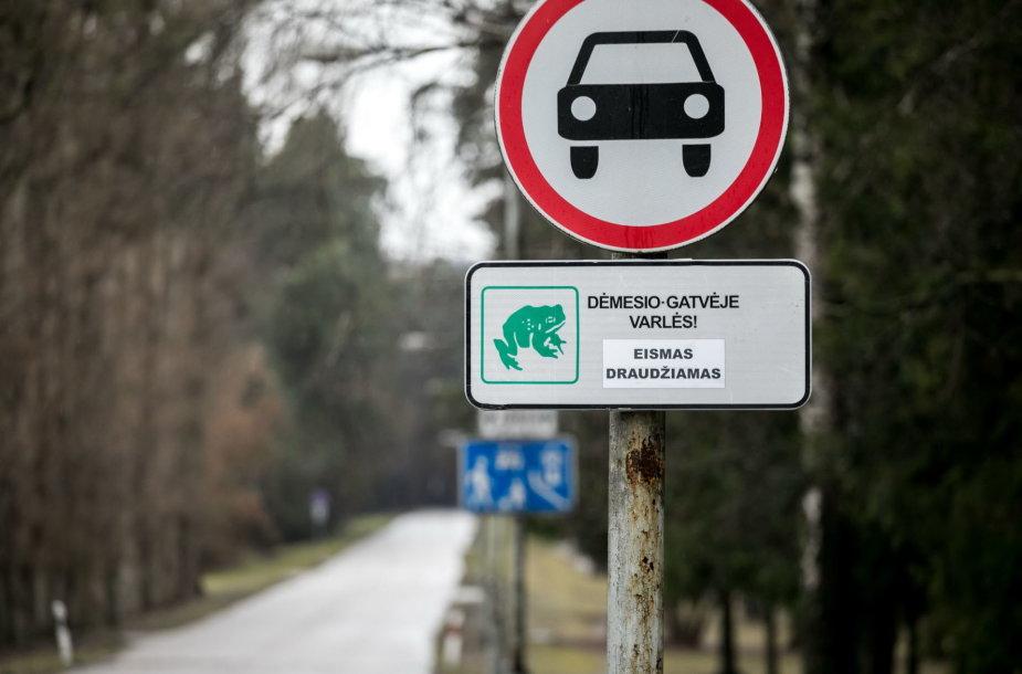 Vilniaus Vingio parke dėl varlių migracijos ribojamas eismas