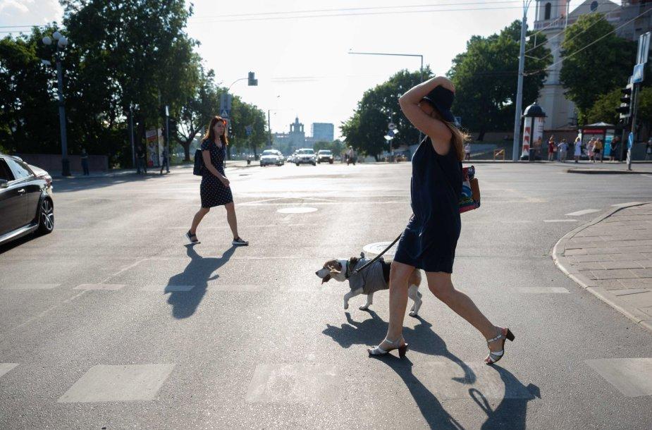 Sausra Vilniuje