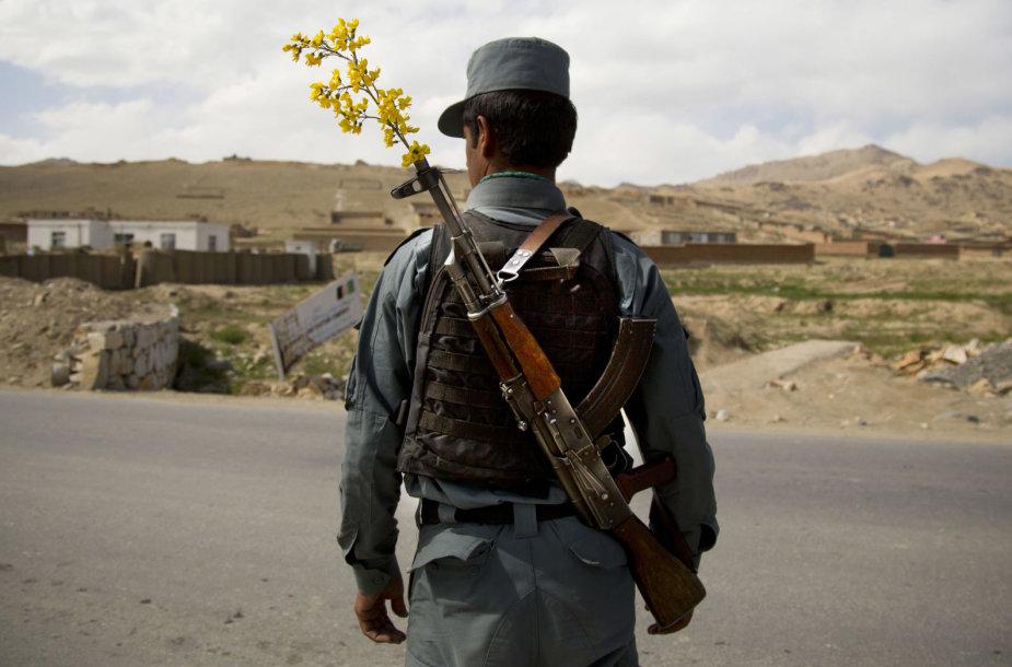 Afganistano karys