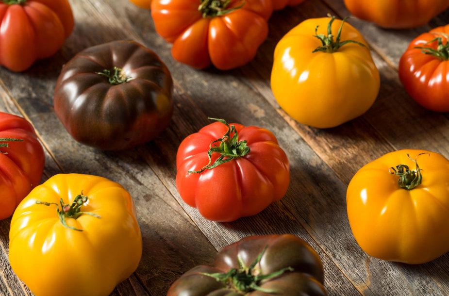 Įvairių rūšių pomidorai