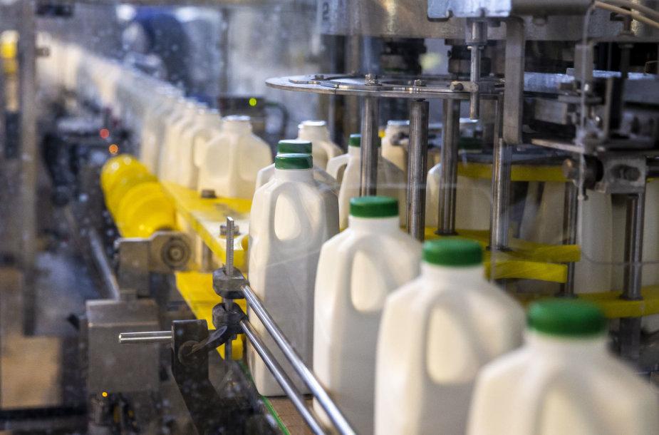 """""""Pieno žvaigždžių"""" pieno gamyba"""