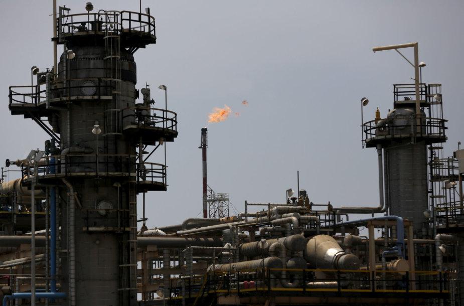 Naftos perdirbimo įmonė