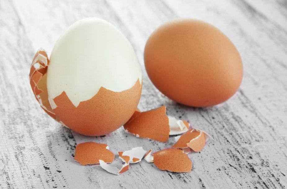 Kiaušinių lukštai