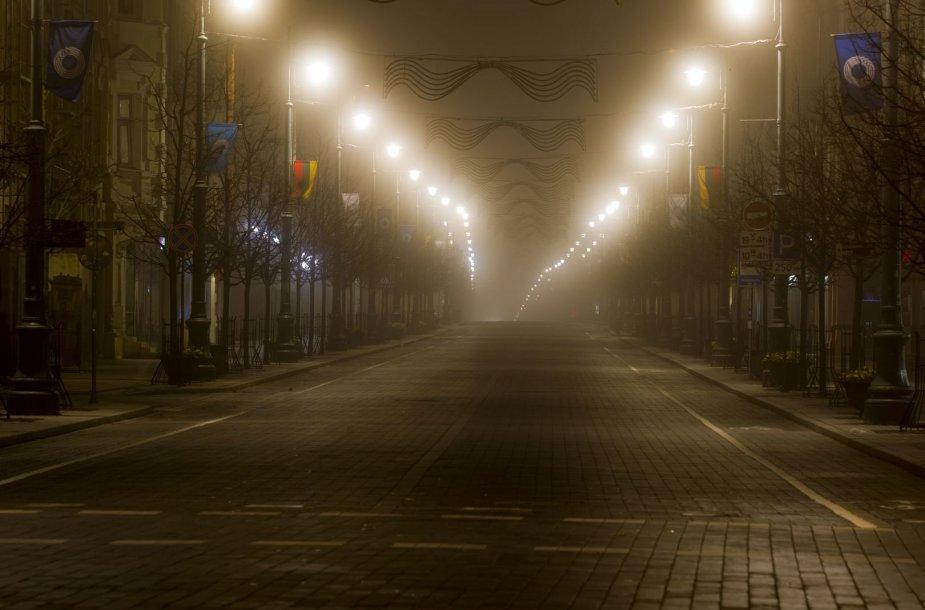 Rūkas Vilniuje