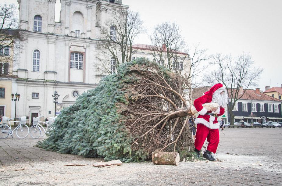 Atsisveikinimas su Kalėdų egle/ Asociatyvi nuotr.