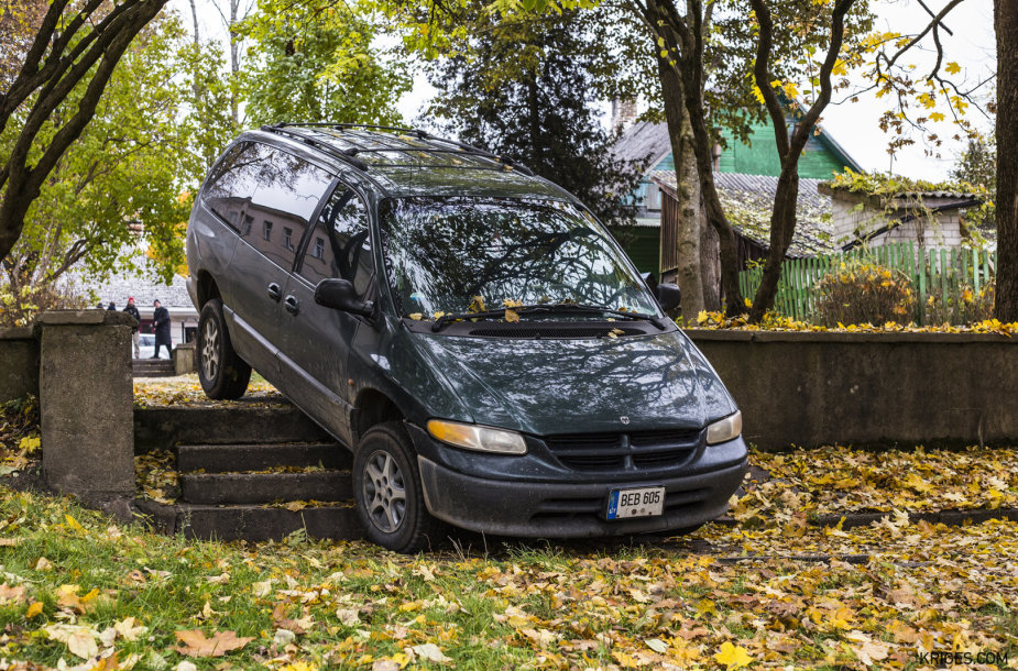 Automobilių parkavimo ypatumai Trakuose