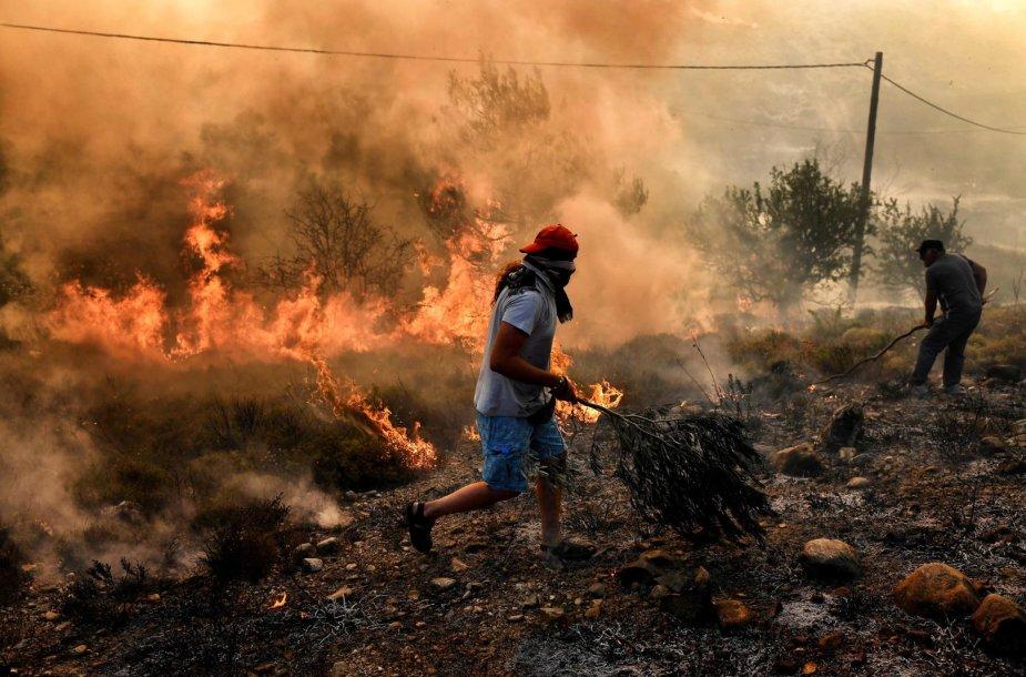 Miško gaisras Graikijoje
