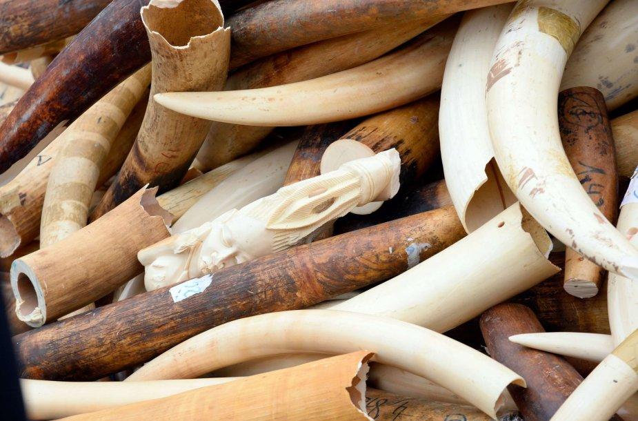 Paryžiuje sunaikintos trys tonos dramblio kaulų