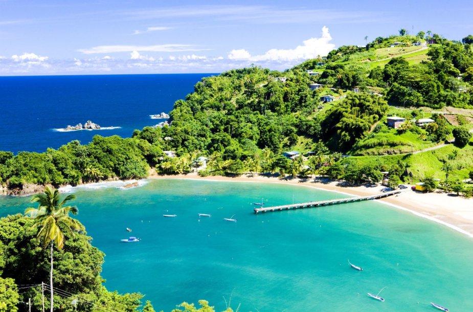 Įlanka Tobago saloje. Šią salą bandė kolonizuoti Lietuvai pavaldi Kuršo hercogystė