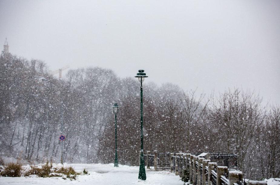 Sniego pūga Vilniuje