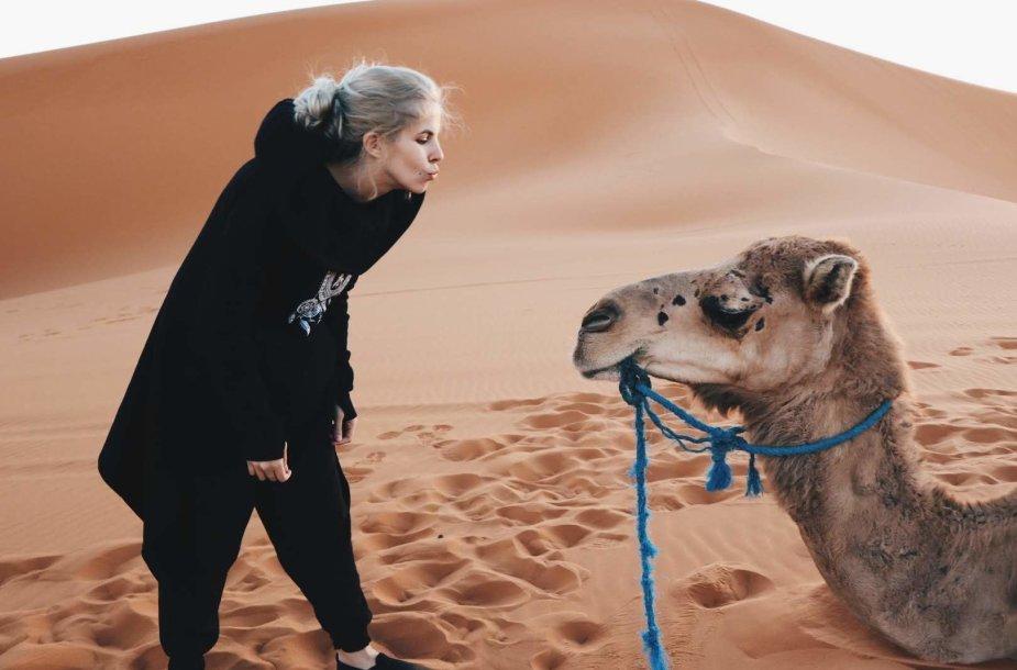 Sacharos kupranugaris
