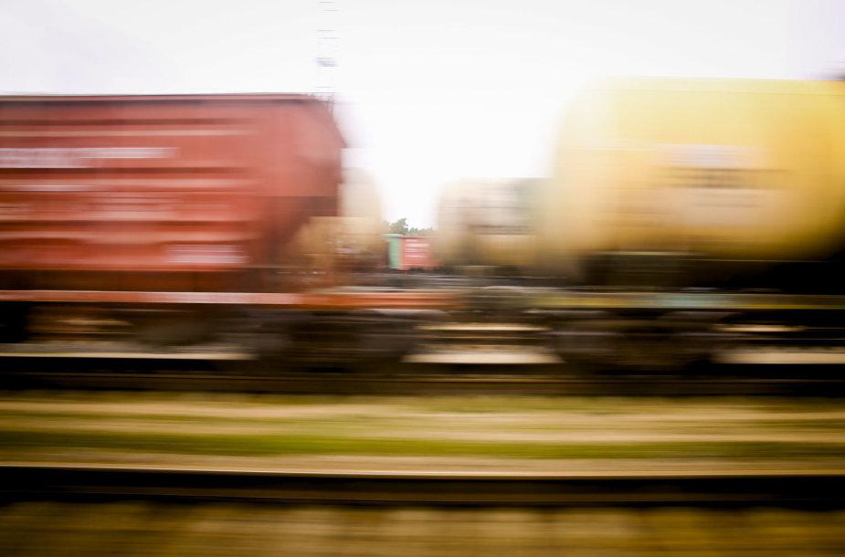 Kelionė traukiniu  į Neries regioninį parką