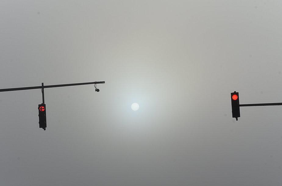 Paskutinės rudens dienos Vytauto Šauklio nuotraukose