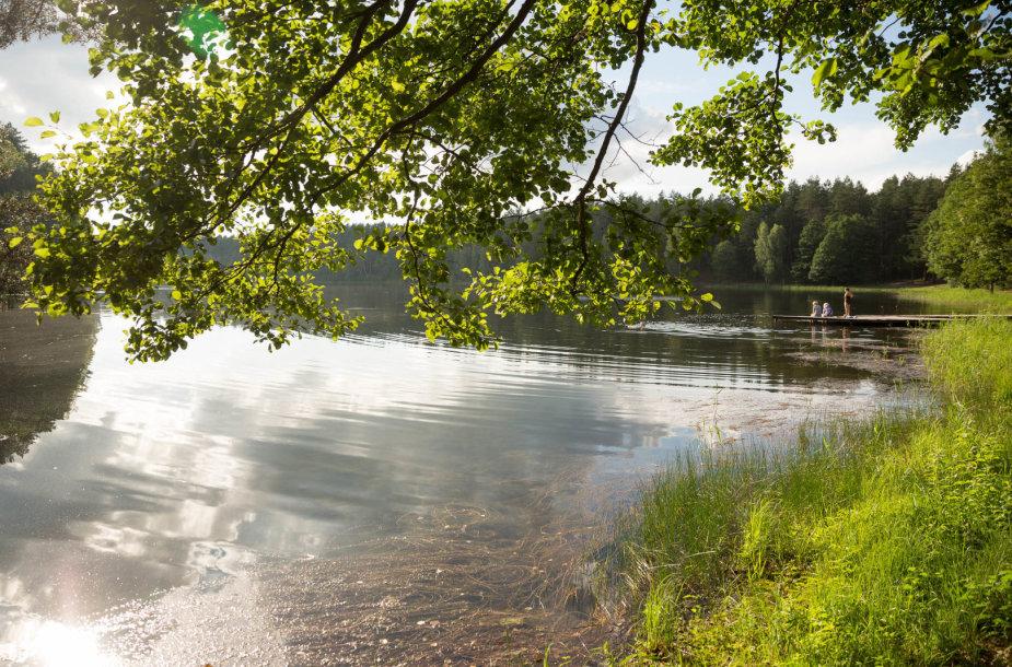 Žiežulio takas vedantis link Žiežulio ežero