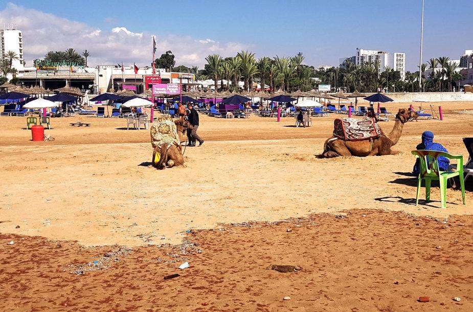 Spalvingasis Marokas: šalis, į kurią keliauti verta be lagaminų