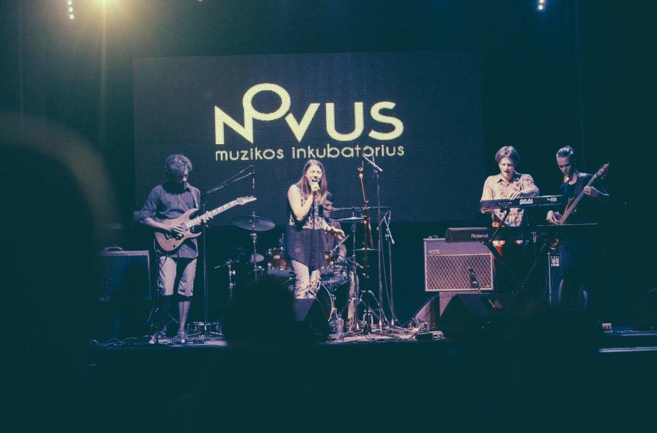 "Muzikos inkubatorius ""Novus"""