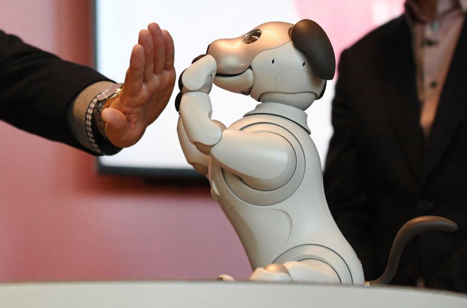 """Robotai, tokie, kaip šis šuniukas """"Aibo"""", yra mieli ir negrėsmingi, kol yra """"kvaili"""". bet kas bus, kai jie mus pranoks?"""
