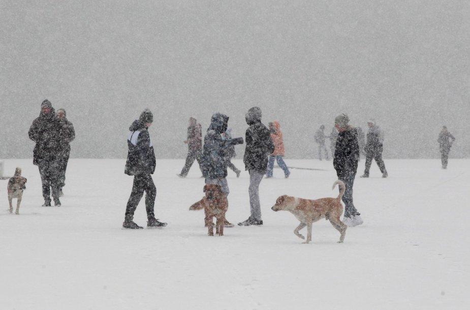 Šiaurės Amerikoje ir Europoje gyventojus džiugina žiemiški orai