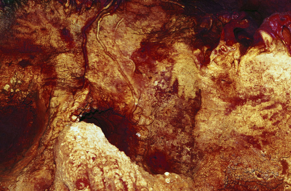 Maltravieso oloje Ispanijoje – bent 66 000 metų senumo piešiniai, kurių autoriai tikrai ne žmonės