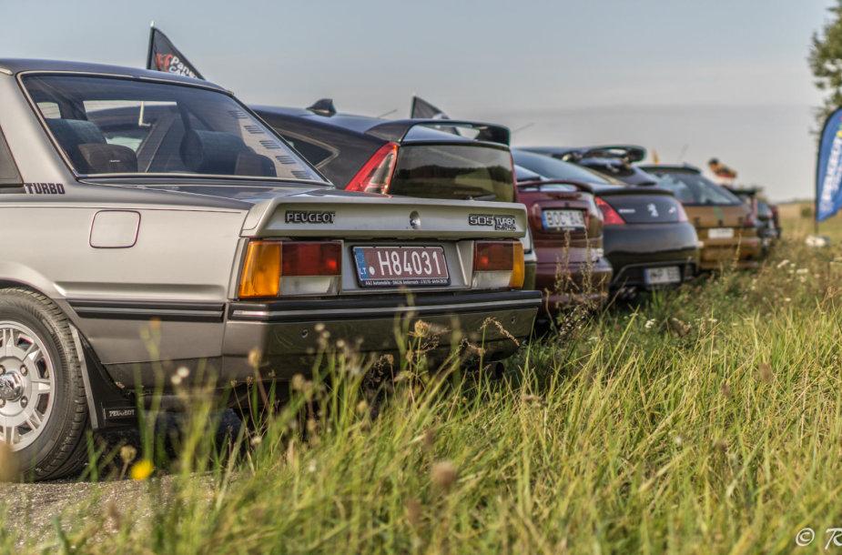 #FrenchMeet2018: Panevėžyje susirinko prancūziškų automobilių gerbėjai