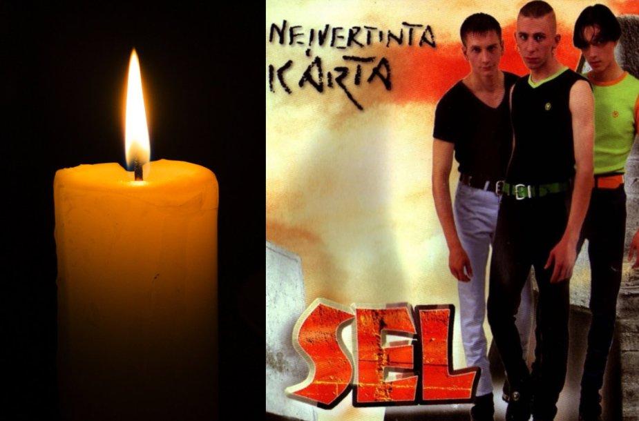 Žvakė, SEL